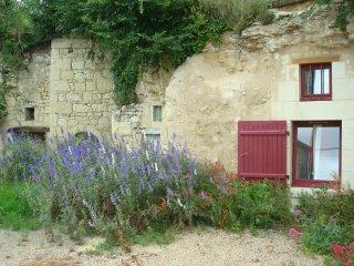 gîte semi-troglodyte situé dans un village viticole de charme près de Saumur. - Le Puy-Notre-Dame vacation rentals