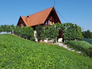 Vineyard Cottage - Zidanica berus - Otocec vacation rentals