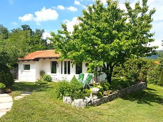 Perfect Chalet with Internet Access and A/C - Vipava vacation rentals
