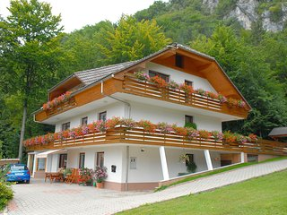 Apartment/Flat in Moste, at Anica's place - Moste vacation rentals