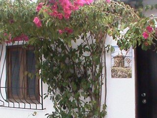 Lodge in Arcozelo, at Armando's place - Arcozelo vacation rentals