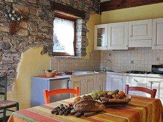 Bright San Damiano Macra Studio rental with Internet Access - San Damiano Macra vacation rentals
