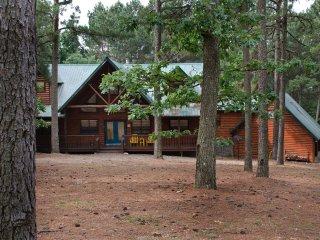 North Star Lodge (Sleeps 14 Pets Allowed) - Broken Bow vacation rentals