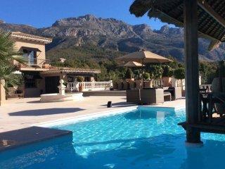 Jardin de la Fontaine - Luxury villa with huge swimming pool, beautiful gardens and great views - Altea la Vella vacation rentals
