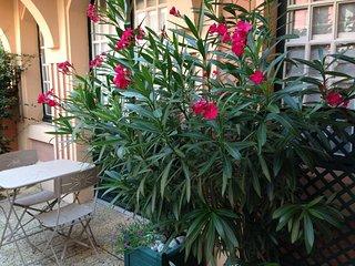 CHARMANT T2 DANS MAISON BARBECUE SALON DE JARDIN - Luz-Saint-Saveur vacation rentals
