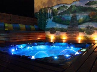 les 3 soleils jacuzzi et piscine - Saint-Joseph vacation rentals