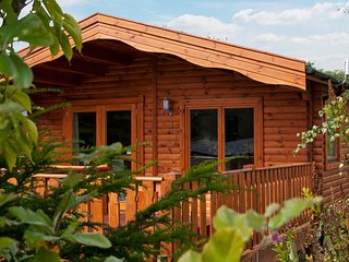 3 Bedroom Plus Lodge with Hot Tub - Winchester vacation rentals