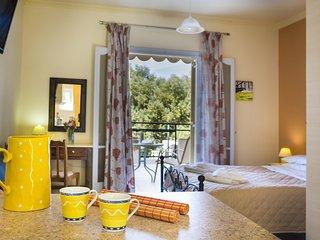Polymnia  I-Ground Floor Studio - Lassi vacation rentals