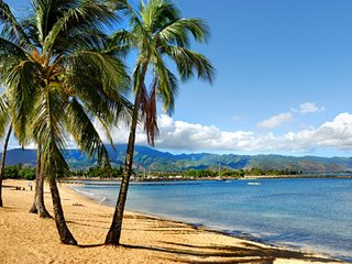 Waikoloa Beach Resort! Short Walk To Beach! Stunning Views! Fairway Villas - Waikoloa vacation rentals