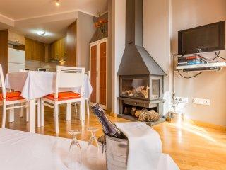 Beautiful 2 bedroom Apartment in La Plana de Mont-Ros - La Plana de Mont-Ros vacation rentals