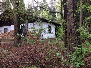 Vakantiehuis in bos met blik op meer - Roding vacation rentals
