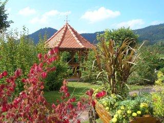 Gîte à La Petite-Raon avec vue panoramique - La Petite-Raon vacation rentals