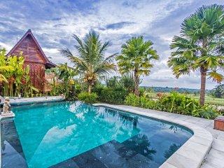 5 bedroom Villa with A/C in Penebel - Penebel vacation rentals
