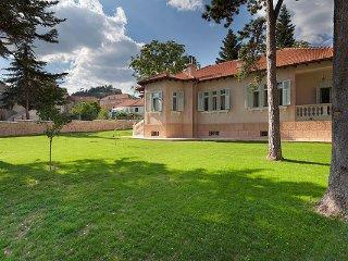 Villa Tripalo - Beautifull villa with a lot of luxury - Sinj vacation rentals