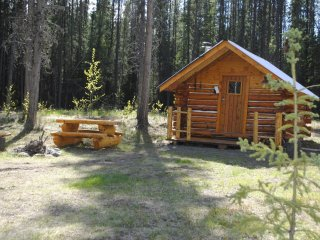 1 bedroom Cabin with Mountain Views in Dease Lake - Dease Lake vacation rentals
