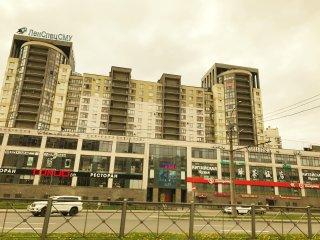 2 bedroom Condo with Central Heating in Saint Petersburg - Saint Petersburg vacation rentals