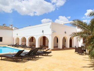 Casa Solariega Luxury Mansion in Villena - Villena vacation rentals