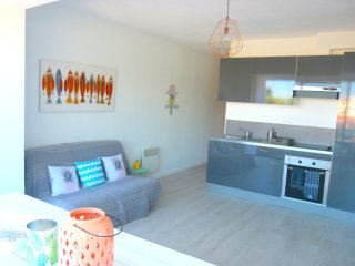 Nice apartment with terrace. Beach at 100m! south exposed. For 4 guests - Saint-Cyprien-Plage vacation rentals
