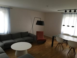Spacious 3 bedrooms apartment in central of Malmo - Malmö vacation rentals