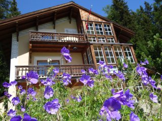Ferienwohnung - Apartment Lakeview - Wolfgang vacation rentals