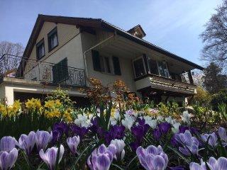 Ferienhaus in Hilterfingen am Thunersee - Hilterfingen vacation rentals
