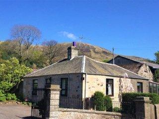 Balgedie Lodge, 5+1, free wifi, log fire, great Loch view, family & pet friendly - Kinross vacation rentals