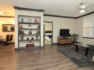 Midtown 2B/2B Apt, 5 Min to DT - B4 - Houston vacation rentals