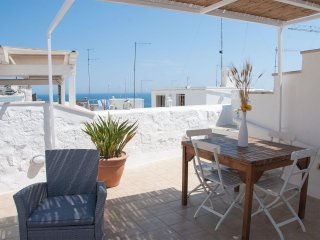 Trinchettina - independent house on 3 levels with terrace sea view - Polignano a Mare vacation rentals