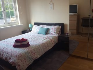 4) double room with kitchenette and en-suit - Greenford vacation rentals