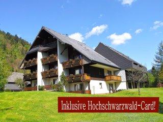 Studio B3 für 2 Gäste im Haus Albmatte St. Blasien-Menzenschwand Schwarzwald - Menzenschwand vacation rentals