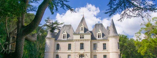 Chateau Alvere - Image 1 - Puy-l Eveque - rentals