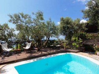 Villa Dei Germogli - Positano vacation rentals