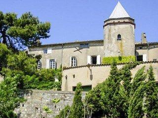 Chateau Carcassona - Bouilhonnac vacation rentals