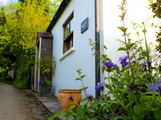 17th Century cottage on edge of Brecon Beacons - Llangadog vacation rentals