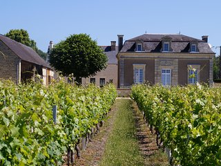 Secrets de Loire - Sucré, Salé - Saint Nicolas de Bourgueil vacation rentals