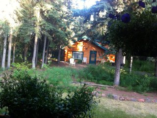 Cozy Cabin with Internet Access and Wireless Internet - North Pole vacation rentals