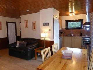 Birch Lodge 16, Newton Stewart - Beautiful lodges situated on Scotland's - New Galloway vacation rentals