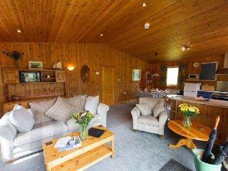 The Pinemarten - The Pinemartin - Crianlarich vacation rentals
