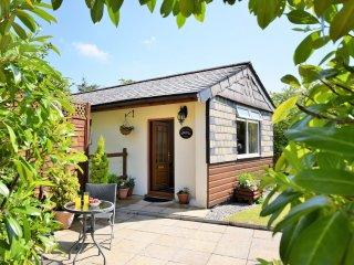 1 bedroom House with Internet Access in Altarnun - Altarnun vacation rentals