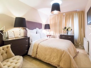 Beautiful apartment in zone 2 central London - Brentford vacation rentals