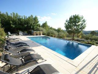 Villa - ST ANTONIN-DU-VAR - Beautiful detached villa in the green heart of the Var with private pool - Saint-Antonin-du-Var vacation rentals