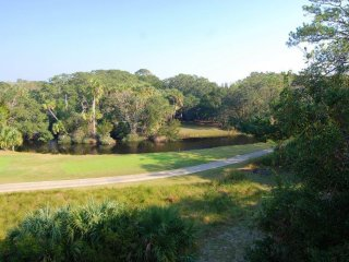 Fantastic lagoon and golf views, Yards from beach and club amenities - Seabrook vacation rentals