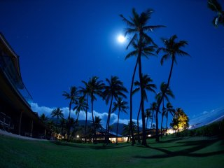 Puamana Nani! Don't Miss Out On Experiencing Paradise Only Steps from the Ocean! - Lahaina vacation rentals