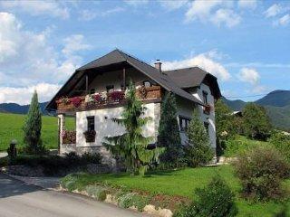 Perfect 2 bedroom Ljubno Apartment with Washing Machine - Ljubno vacation rentals