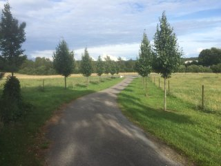 At an old farm with chickens and a lake in the backyard - Hillerød vacation rentals