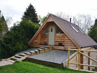 Comfortable 2 bedroom House in Ashton Under Hill - Ashton Under Hill vacation rentals