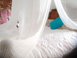 Romantic House with Internet Access and A/C - Tallebudgera vacation rentals