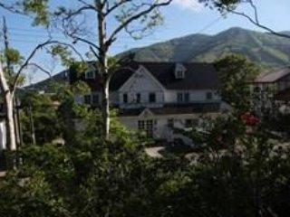 Ski Lodge at Madarao Mountain Resort - Iiyama vacation rentals