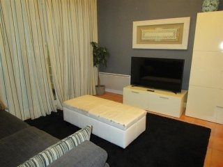 Nice Condo with Parking and Washing Machine - Hendaye vacation rentals