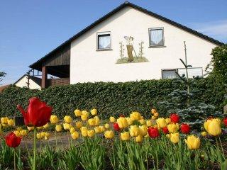 Pension und Ferienwohnung Holzinger - Untereisenheim vacation rentals